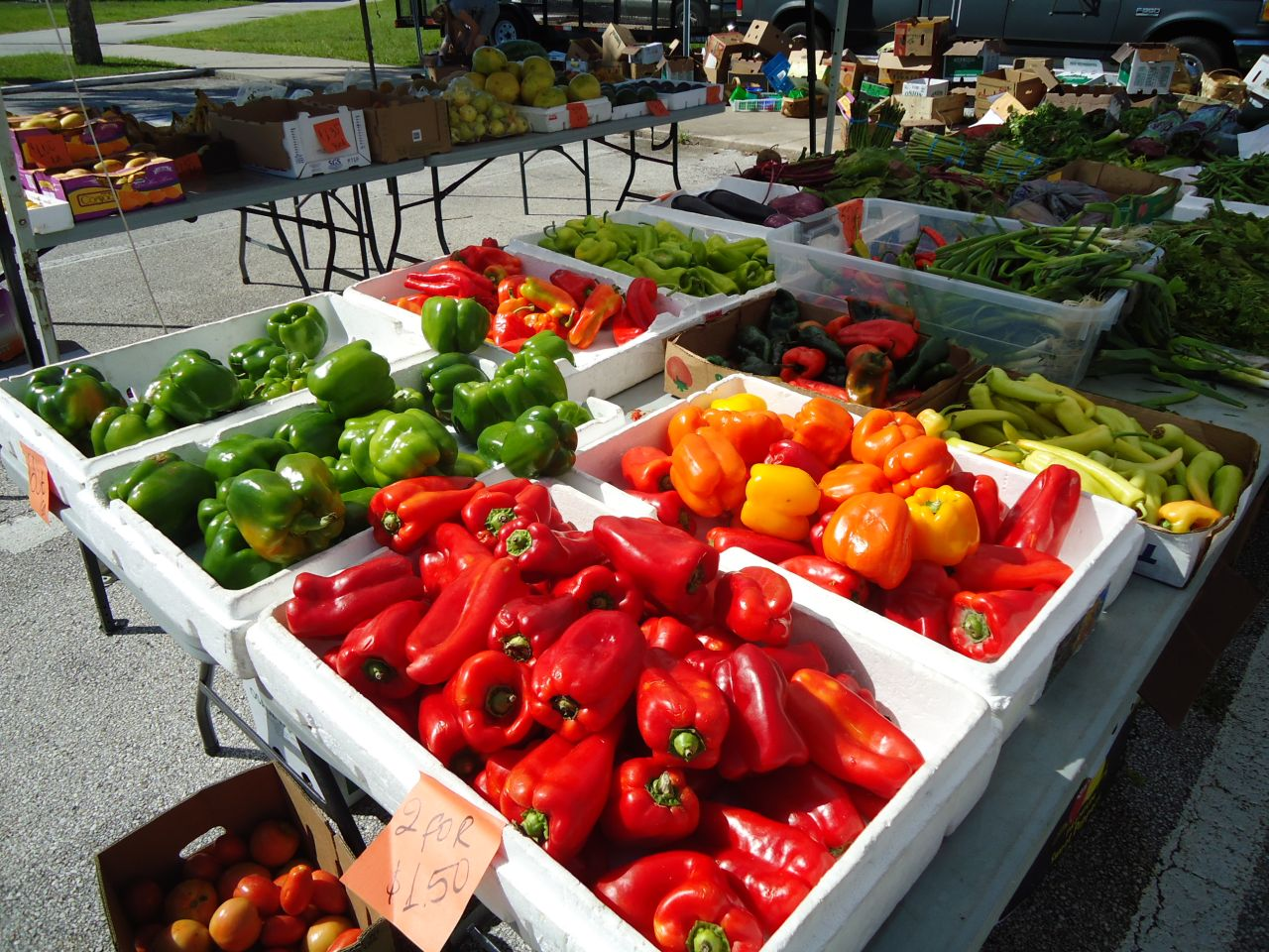 A variety of produce is available at the Daytona Downtown Farmers Market